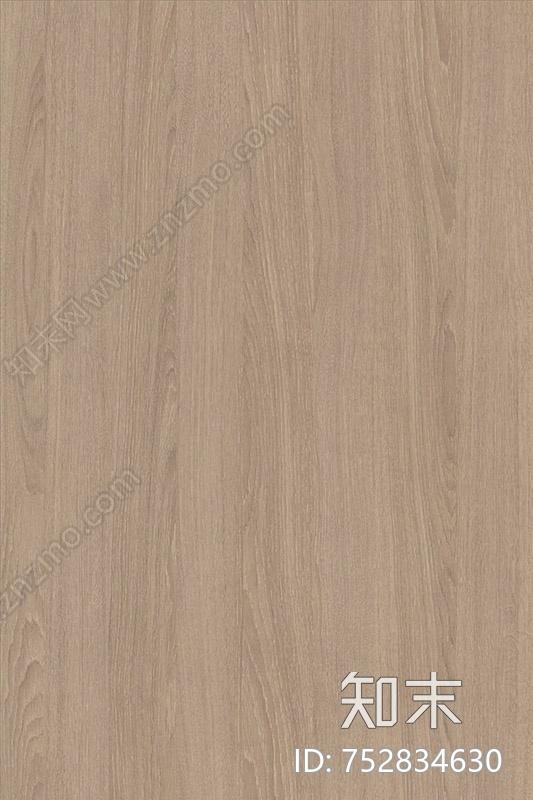 沙棕色橡木贴图下载【ID:752834630】