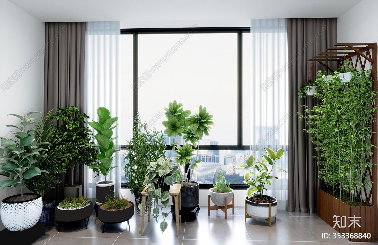 现代绿植 盆栽 花架