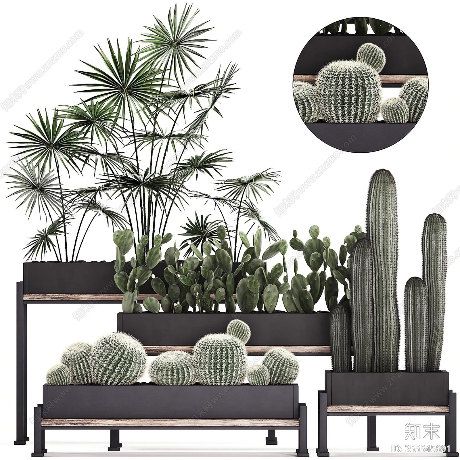 现代盆栽绿植3D模型下载【ID:355545891】