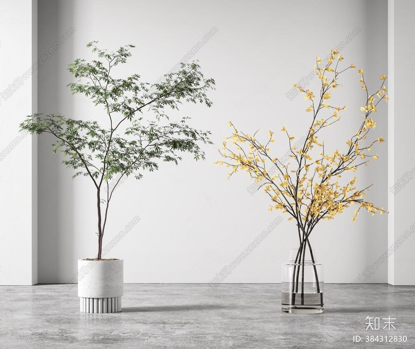 现代绿植盆栽3D模型下载【ID:384312830】