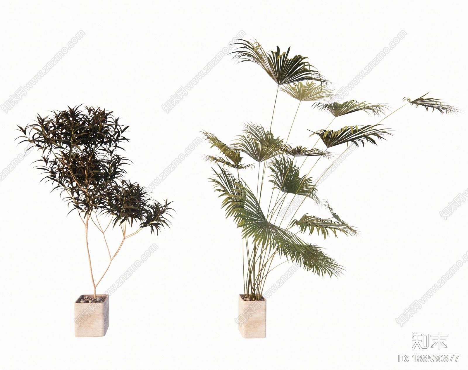 现代绿植盆栽SU模型下载【ID:188530877】