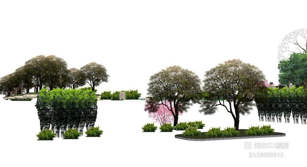 精品免费植物树灌木组合SU模型
