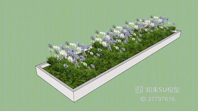 花坛 草图大师模型