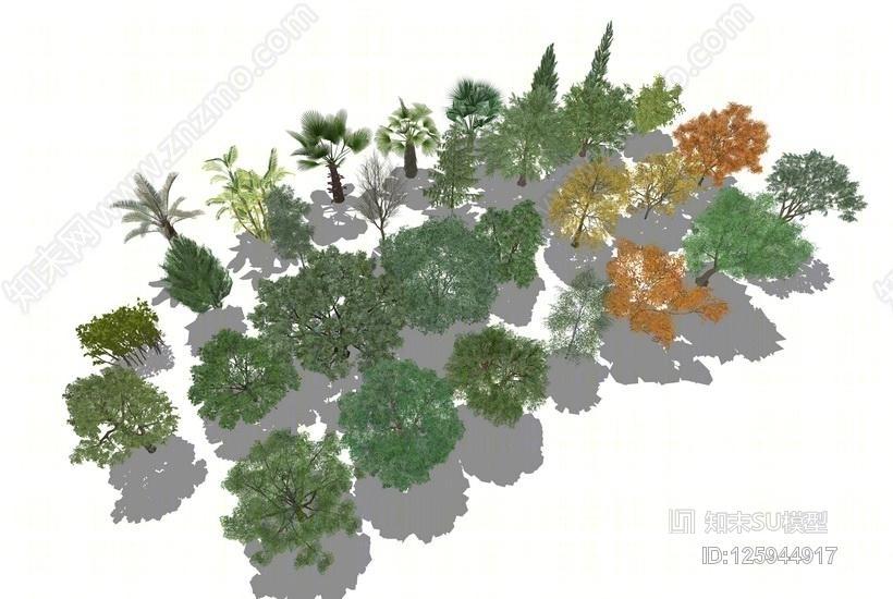 3D植物树组合SU模型
