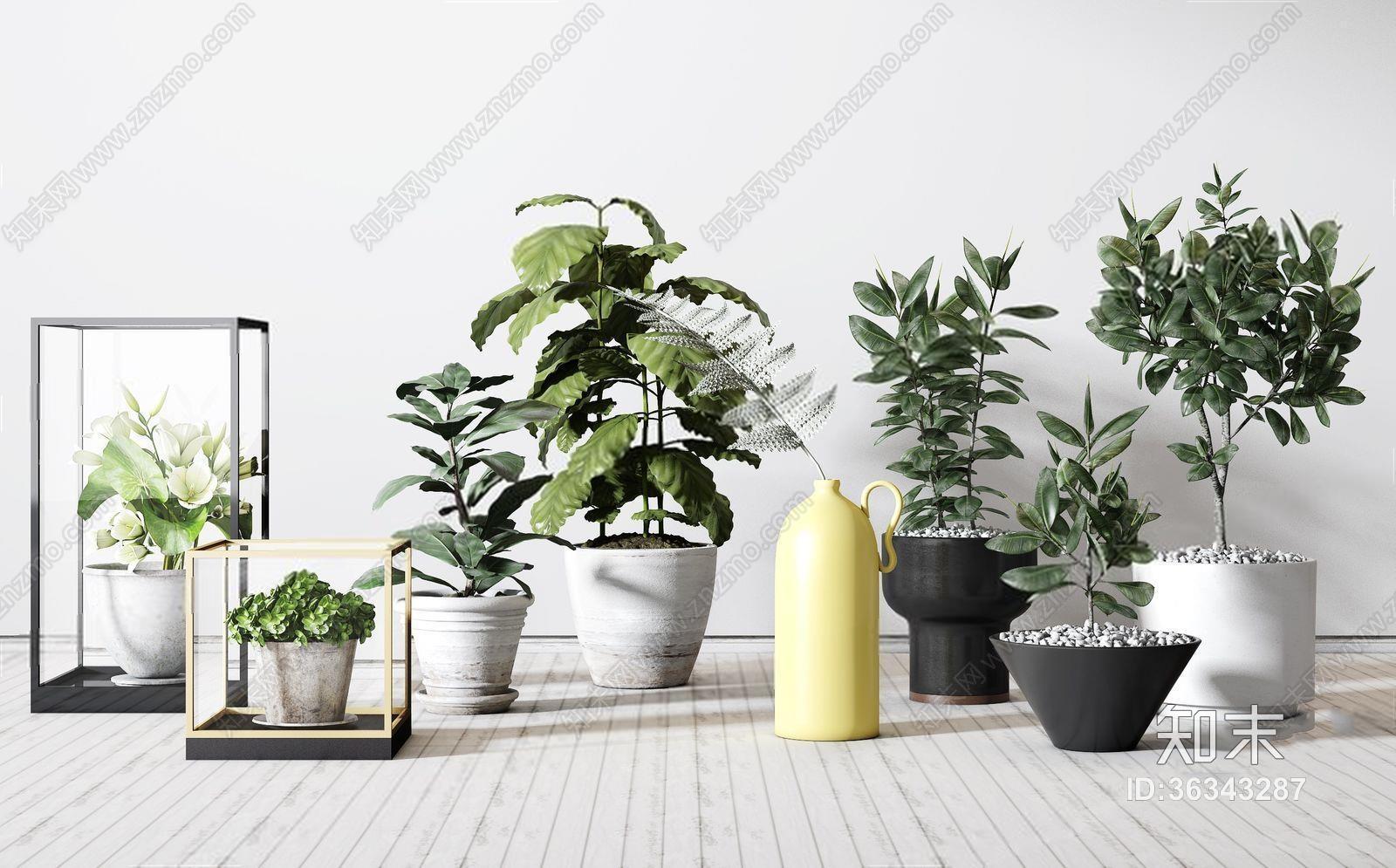 植物盆栽组合 北欧绿植 盆栽 绿植 花瓶 花卉 器皿 陶瓷